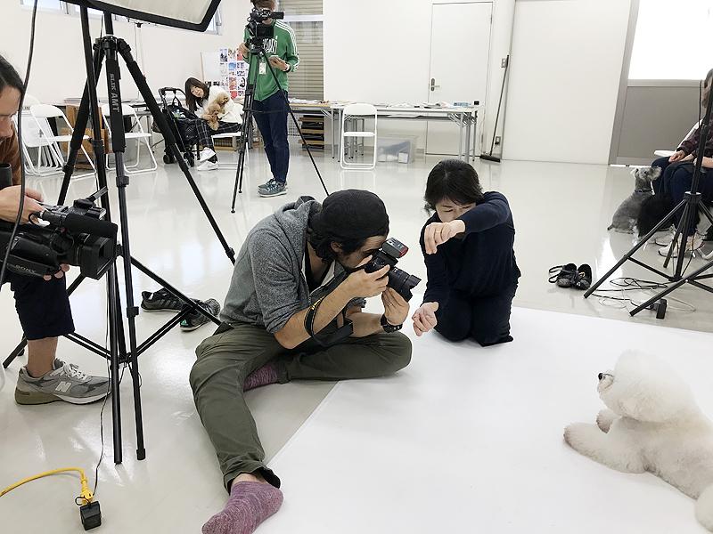 動物プロダクション エムドッグス ペットモデル タレント犬育成講座イメージ
